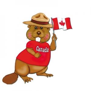 加拿大留学预科学习什么内容?什么学生适合读?