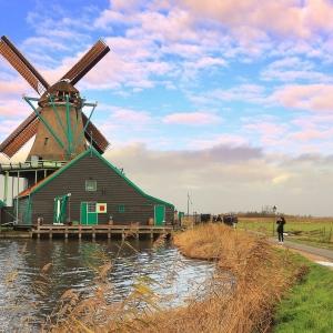 看这里!关于荷兰留学转专业事宜
