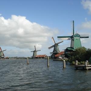 荷兰决定降低这几种居留申请费