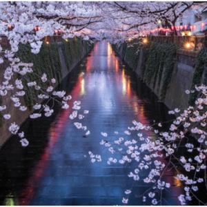 留学大数据告诉你真实的日本留学生活