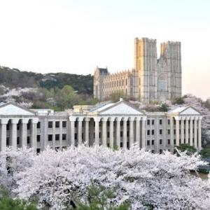 2015韩国大学TOP30新鲜出炉