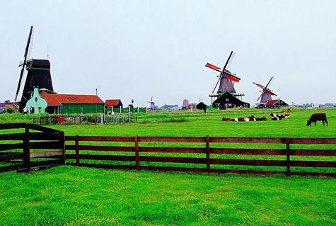2016如何申请荷兰留学?