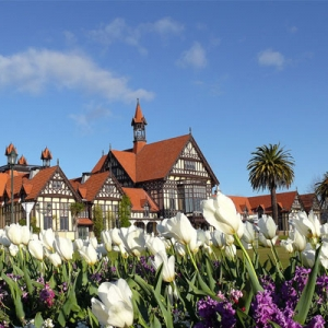 新西兰留学如何申请转学