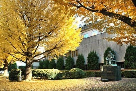申请日本高中留学需要满足哪些条件