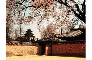 韩国艺术留学前景介绍及院校推荐