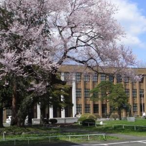 申请日本名校的要求是什么