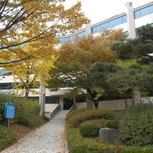 在韩外国留学生主要集中在首尔 中国留学生最多