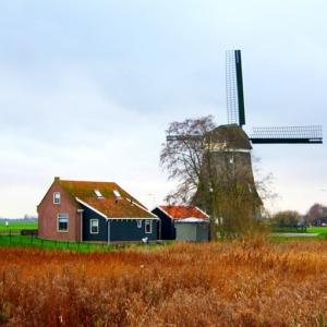 2019年荷兰留学的优势