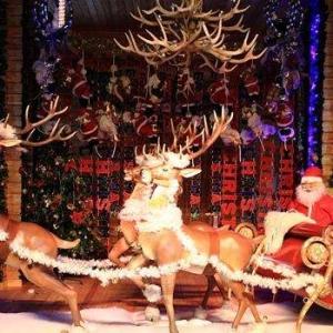 世界各地是如何过圣诞节的?