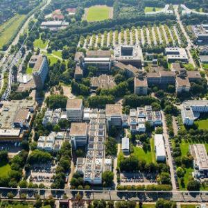 海外中国留学生搭建桥梁 让世界更了解中国