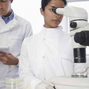 留学生如何撰写科学实验报告