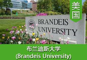 平同学——美国布兰迪斯大学