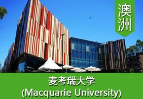 金同学——澳洲麦考瑞大学