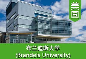 王同学——美国布兰迪斯大学