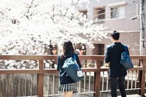 申请日本留学,日语差怎么办?