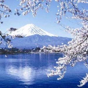 经济实用型留学国家首选日本