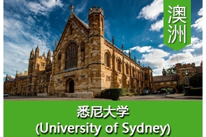陈同学——澳洲悉尼大学