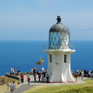 高考成绩可以申请新西兰留学吗
