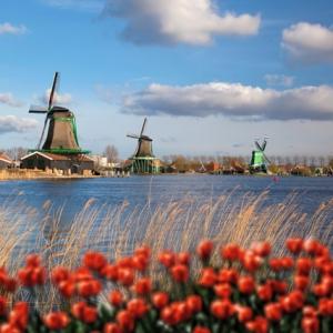 荷兰留学生活花费情况