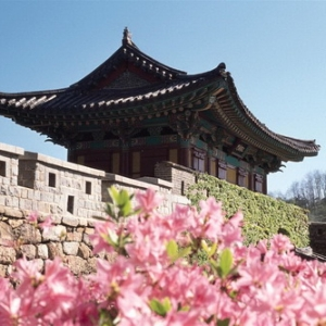 韩国留学的优势和择校解析