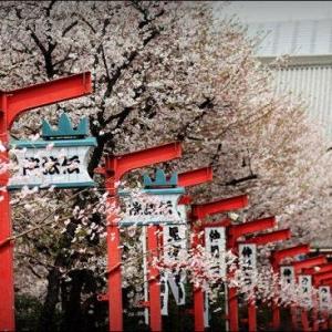 申请日本留学要符合哪些条件