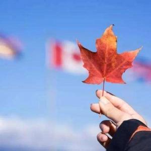 加拿大留学生活中的细节总结