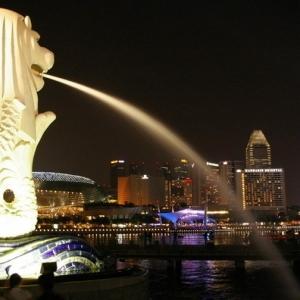 新加坡留学热门专业分析
