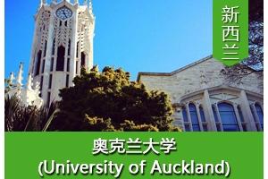 张同学——新西兰奥克兰大学