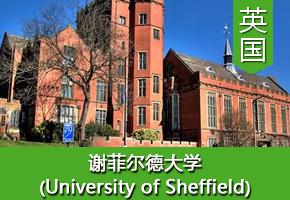 俞同学——英国谢菲尔德大学