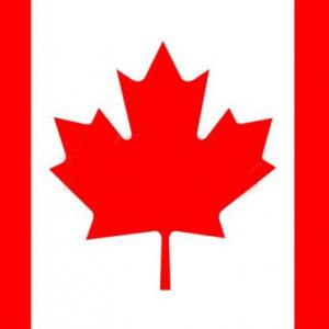 加拿大签证办理被拒情况及对策分析