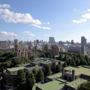 2020年日本院校排名解析