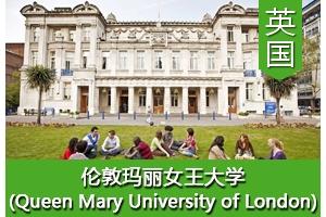 王同学——英国伦敦玛丽女王大学
