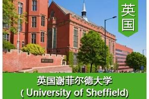 葛同学——英国谢菲尔德大学