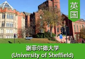 王同学——英国谢菲尔德大学