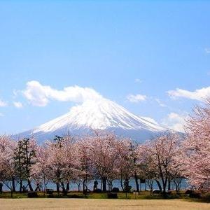 为什么越来越多的学生青睐日本留学?