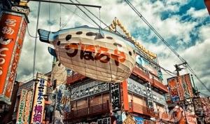 高中毕业赴日本留学要读日语培训院校么?