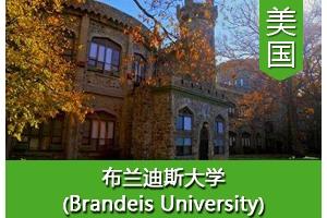 陈同学——美国布兰迪斯大学