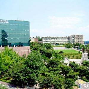 韩国大学与国内大学有何不同之处?