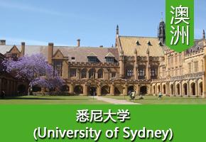 王同学——澳洲悉尼大学