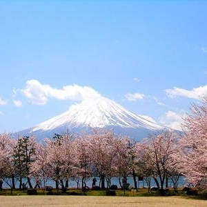 日本留学申请要点介绍