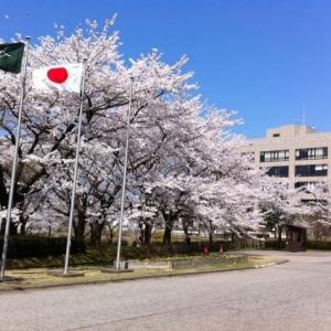 日本国立大学确定增加留学生招录名额