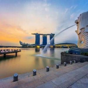 2020年新加坡留学签证新政解析