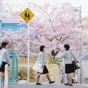如何申请日本的高中留学?