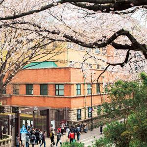 日本留学常见的误区有哪些