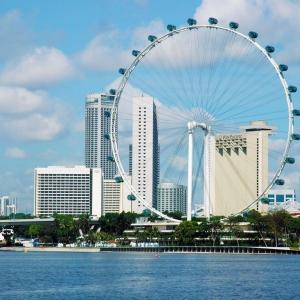 申�新加坡留�W有哪些步�E