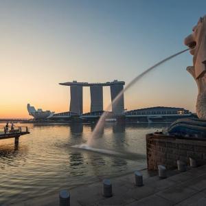 新加坡留学有哪些专业比较热门?