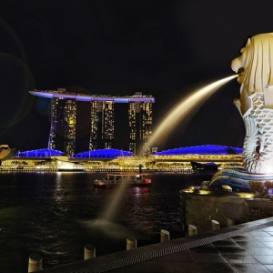 新加坡留�W��C如何�k理?