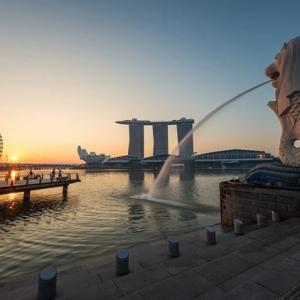 新加坡留�W哪些��I���I后好就�I